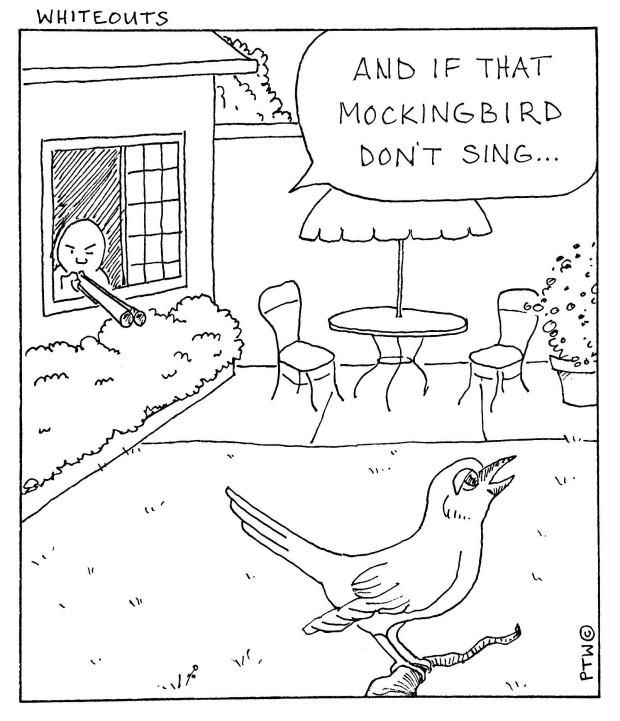 7-3-14 mockingbird-1