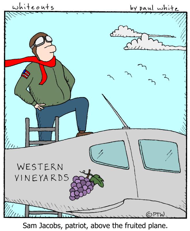 7-4-15 fruited plane - color