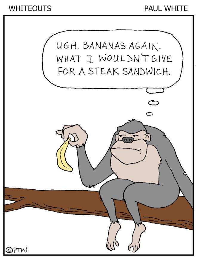 8-19-15 - bananas - color